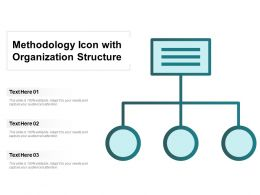 Methodology Icon With Organization Structure