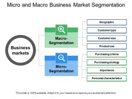 Micro And Macro Business Market Segmentation