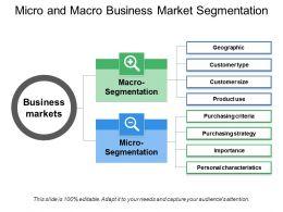 Micro And Macro Business Market Segmentation