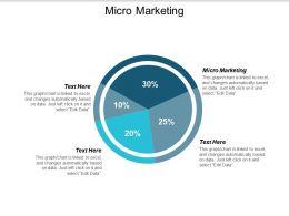 Micro Marketing Ppt Powerpoint Presentation File Portrait Cpb
