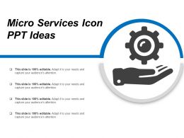 Micro Services Icon Ppt Ideas
