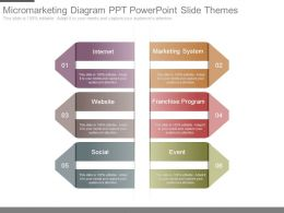 Micromarketing Diagram Ppt Powerpoint Slide Themes