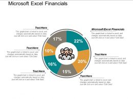 Microsoft Excel Financials Ppt Powerpoint Presentation Icon Template Cpb