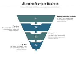 Milestone Examples Business Ppt Powerpoint Presentation Slides Design Inspiration Cpb