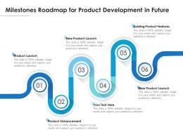Milestones Roadmap For Product Development In Future