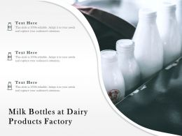 Milk Bottles At Dairy Products Factory