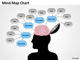 Mind Map Chart elevation