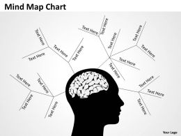 Mind Map drawing Chart