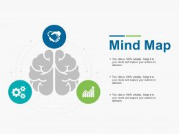 Mind Map Idea Ppt Gallery Introduction