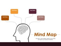 Mind Map Operation Goals Management Ppt Infographic Template Infographic Template