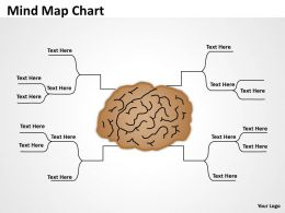 Mind Map Photograph Chart