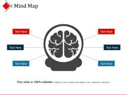 Mind Map Ppt Example Professional