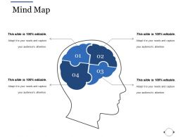 Mind Map Ppt File Rules