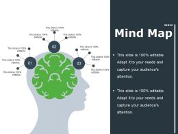 Mind Map Ppt File Summary