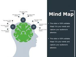 Mind Map Ppt File Summary