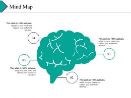 Mind Map Ppt Gallery Pictures