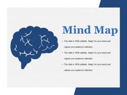 Mind Map Ppt Model