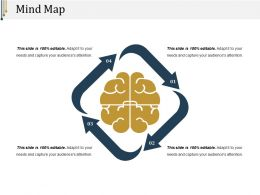 Mind Map Ppt Presentation Examples