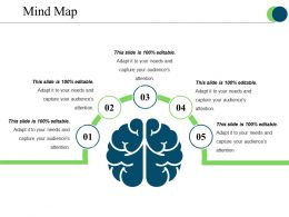 Mind Map Ppt Presentation Examples Template 1