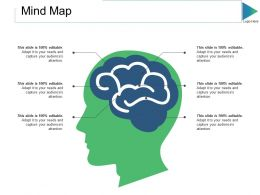 Mind Map Ppt Slides Examples