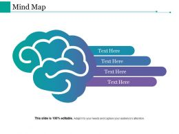 Mind Map Ppt Styles Guide