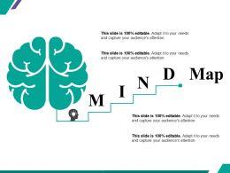 Mind Map Ppt Summary Display