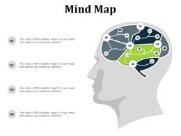 Mind Map Ppt Summary Example Introduction