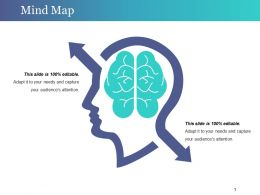 Mind Map Presentation Pictures Template 1