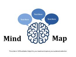 Mind Ppt File Layout
