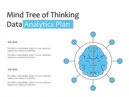 Mind Tree Of Thinking Data Analytics Plan
