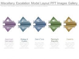 miscellany_escalation_model_layout_ppt_images_gallery_Slide01