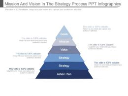 Mission And Vision In The Strategy Process Ppt Infographics