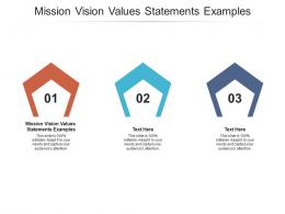 Mission Vision Values Statements Examples Ppt Powerpoint Presentation Portfolio Inspiration Cpb