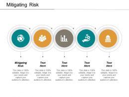 Mitigating Risk Ppt Powerpoint Presentation Model Topics Cpb
