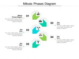 Mitosis Phases Diagram Ppt Powerpoint Presentation Infographic Template Samples Cpb