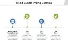 Mixed Bundle Pricing Example Ppt Powerpoint Presentation Styles Visual Aids Cpb