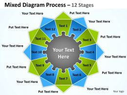 Mixed Diagram Process 12 Stages For Strategy