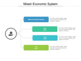 Mixed Economic System Ppt Powerpoint Presentation Pictures Graphics Design Cpb