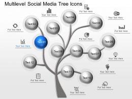 mj_multilevel_social_media_tree_icons_powerpoint_template_Slide01