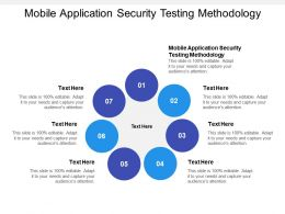 Mobile Application Security Testing Methodology Ppt Powerpoint Presentation Visual Aids Pictures Cpb