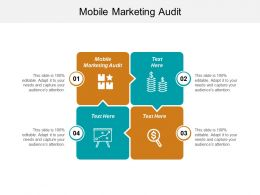 Mobile Marketing Audit Ppt Powerpoint Presentation Infographics Gridlines Cpb