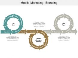 Mobile Marketing Branding Ppt Powerpoint Presentation Gallery Objects Cpb