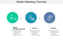 Mobile Marketing Channels Ppt Powerpoint Presentation Ideas Microsoft Cpb