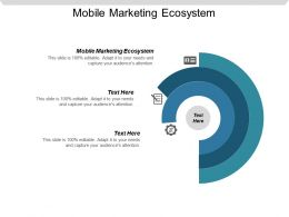 Mobile Marketing Ecosystem Ppt Powerpoint Presentation Gallery Outfit Cpb