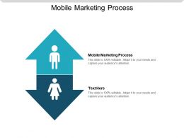 Mobile Marketing Process Ppt Powerpoint Presentation Styles Picture Cpb