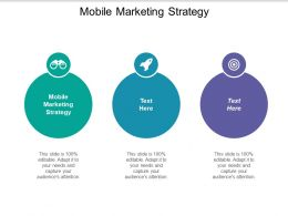 Mobile Marketing Strategy Ppt Powerpoint Presentation Show Cpb