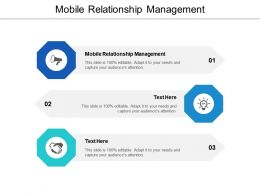 Mobile Relationship Management Ppt Powerpoint Presentation Ideas Pictures Cpb