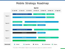 Mobile Strategy Roadmap Team Ppt Powerpoint Presentation Show Format