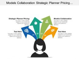 Models Collaboration Strategic Planner Pricing Nonprofit Investment Strategy Cpb