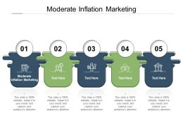 Moderate Inflation Marketing Ppt Powerpoint Presentation Inspiration Graphics Pictures Cpb